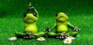 24 Instragram Captions of Yoga – (Clever and Funny)