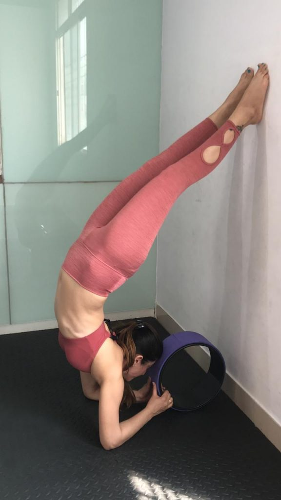 5 Simple Yoga Postures Beginners Can Ace With A Yoga Exercise Wheel